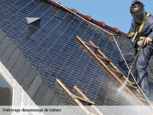 Démoussage de toiture à Septfonds Tél :05.33.06.09.37